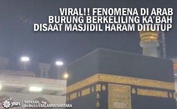 burung_tawaf_kabah_viral